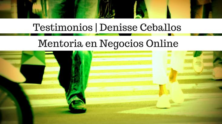 Video Testimonios Denisse Ceballos Mentoria en Negocios Online para Guillermo Gagliardi Experto en Sistemas de Negocios En red